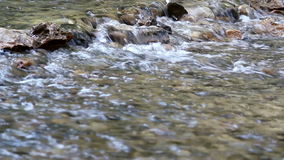 Water stream spring season stock footage