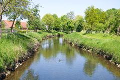 Water stream in spring time Royalty Free Stock Photo