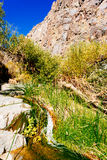 Small mountain stream and grass Stock Photo