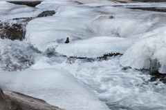 Water stream under ice Stock Photography