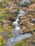 Water, Stream, Wilderness, Nature Reserve royalty free stock images