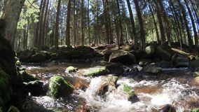 Water stream stock footage