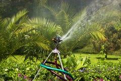 Water Streamer Royalty Free Stock Photos