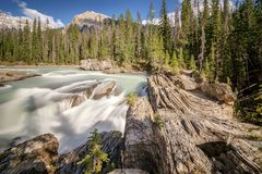 Water streaming down rocks in Yoho National Park royalty free stock images