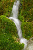 Water streaming over green moss. Small waterfall over green mossy rocks royalty free stock images