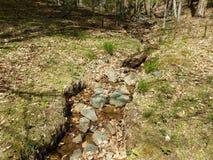 Water of stroom met rotsen en grassen royalty-vrije stock foto's