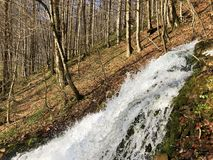 Water supply flowing source Tschuder with waterfall and karst spring or Karstquelle Tschuder, Schwende royalty free stock image