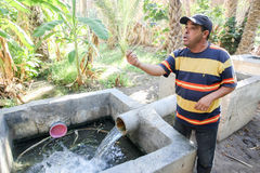 Water supply in oasis Stock Image