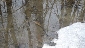 Water surface in brook with melting ice in spring stock video footage
