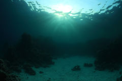 Water surface and coral reef Stock Photo