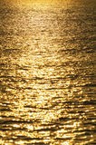 Water surface gold Stock Images