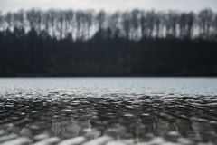 Water Surface On The Lake And The Trees In The Line Above The Lake royalty free stock photos