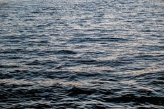 Water surface with reflections in the evening. Abstraction royalty free stock photo