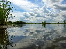 Sky reflected in water of Bug river in Poland. Water surface reflects the cloudy sky over the the bed of Bug river in masovia region in Poland. Water plants on royalty free stock image