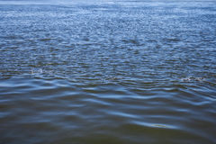 Water surface of river with ripples, abstract background Stock Photos