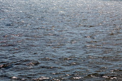 The water surface of the river, sea, lake or ocean. Textured background Royalty Free Stock Photography