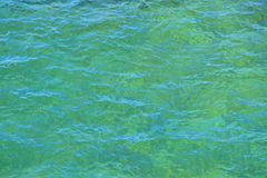 Water surface with small waves Stock Images