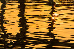 Water surface with sparkling light reflections Royalty Free Stock Images