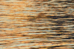 Water surface in sunset. Orange water surface reflected in the sunset Stock Image