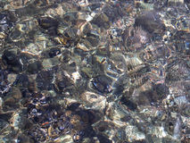 Water Surface Texture. An abstract photograph of shallow ocean water distorting the rocks below the surface Stock Photo