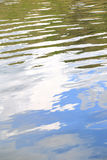 Water surface texture with ripples and vegetation Royalty Free Stock Photo