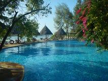 Water, Swimming Pool, Nature, Resort royalty free stock image