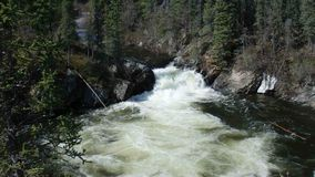 Water swirling at the bottom of a cascade in the rocky mountains stock video footage