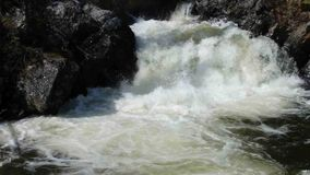 Water swirling at the bottom of a cascade in the rocky mountains. Whitewater at the base of a small waterfall as seen in the yukon territories during the spring stock video