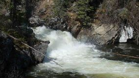 Water swirling at the bottom of a cascade in the rocky mountains. Whitewater at the base of a small waterfall as seen in the yukon territories during the spring stock footage
