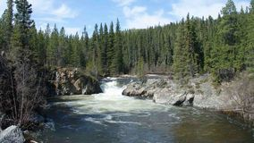 Water swirling at the bottom of a cascade in the rocky mountains. Whitewater at the base of a small waterfall as seen in the yukon territories during the spring stock video footage