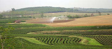 Water system for agricultural Royalty Free Stock Photos