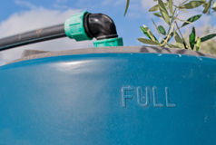 Water tank. Blue water tank under an olive tree Royalty Free Stock Photo