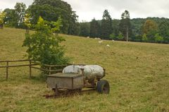 Water tank in grass field with sheep stock image