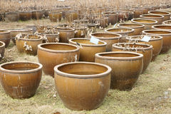 Water tanks. For cultivating plants in field Stock Photo