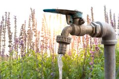 Water tap with flowing water and Lavender flower field Royalty Free Stock Photography