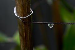 Water tappar Arkivbilder