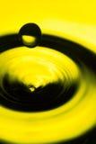Water tappar kickagle Arkivbilder