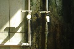 Water taps. Shower room covered with mold and fungus in the hostel Royalty Free Stock Images