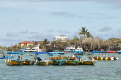 Water taxis in Puerto Ayora, Santa Cruz Stock Images