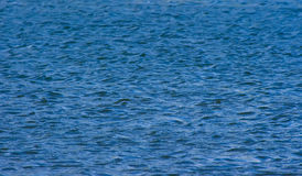 Water texture. Photo of river. Shallow DOF Royalty Free Stock Photography