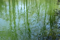 water texture with distorted green reflections Royalty Free Stock Photos
