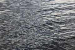 Water texture Stock Photography