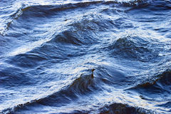 Water texture and waves Royalty Free Stock Photos