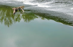 Water on a threshold of the river is rolled Royalty Free Stock Photography