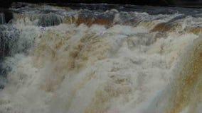 Water thundering at kakabeka falls in ontario canada stock footage