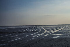 Water tide tracks on sandy beach at sunset Royalty Free Stock Image