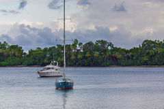 Water transport near the cost with palm trees Stock Photography
