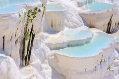 Water travertine pools at Pamukkale, Turkey Royalty Free Stock Photos