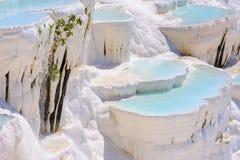 Water travertine pools at Pamukkale, Turkey royalty free stock photos