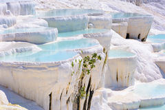 Water travertine pools at Pamukkale, Turkey Stock Photo